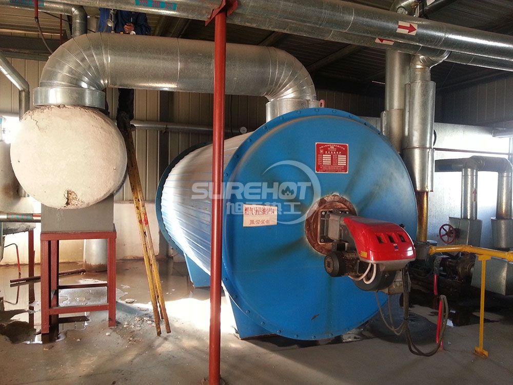 廊坊台湾工业园 2.0MW天然气柴油两用导热油炉燃烧器